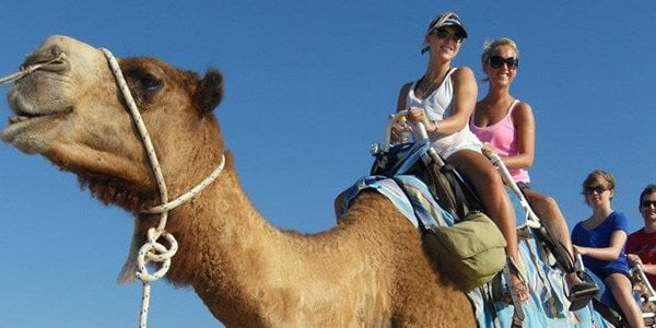 Share a camel ride