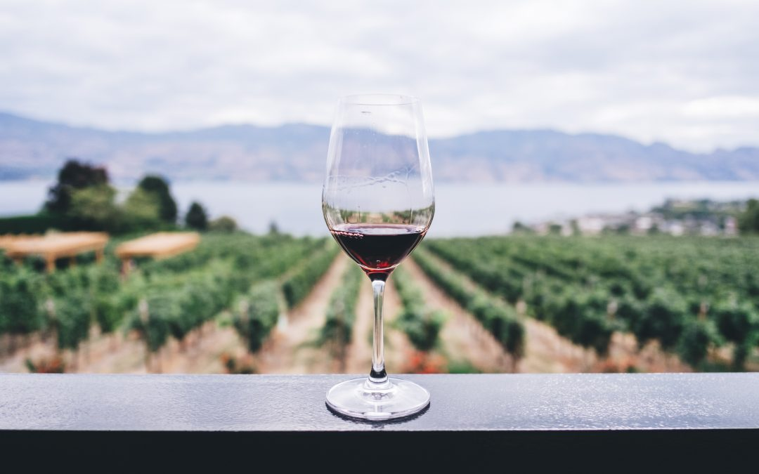 6 Rockstar Facts about Wine!